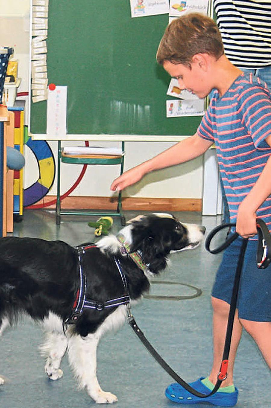 Schulklasse mit Hund